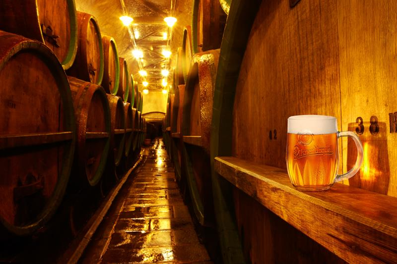 1111533_ext_Brewery tours in Prague_bg.jpg