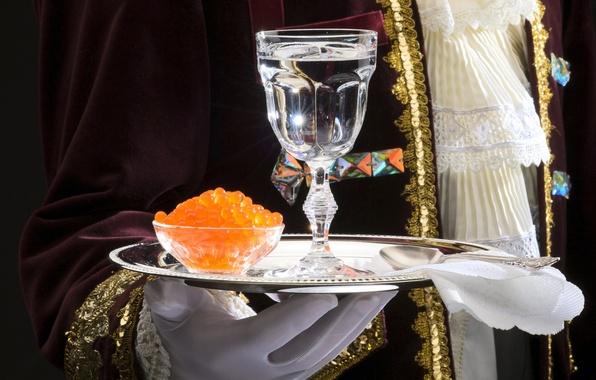 Dégustation de Vodka et Caviar